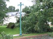 Second tree down in Lewisburg