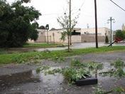 Damaged stop sign, fallen tree, blown debris in Lewisburg