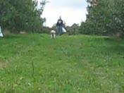 Running thru the apple orchard!