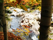 Autumn at Coos canyon 2.JPG