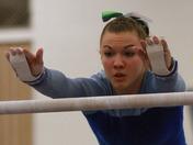 CASHS Wins State Gymnastics