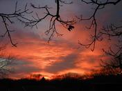 sunset nov 18 009.jpg