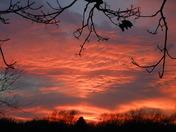 sunset nov 18 011.jpg