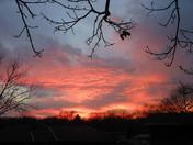 sunset nov 18 012.jpg