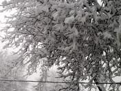 Plattsmouth Snow