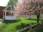 Spring in Iowa