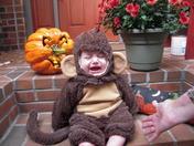 Carter the Monkey
