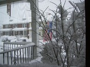 OUT MY FRONT WINDOW ROSS ST LANCASTER ST