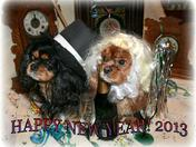 Happy New Year from Lizzy and Baxter