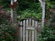 gardenpics 065.JPG