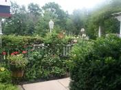 gardenpics 087.JPG