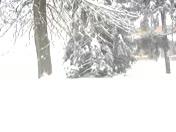Snow in Marticville