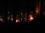 wilkes co bowling alley fire