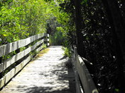 Herb Kale Nature Trail