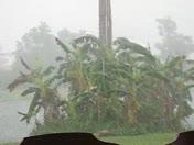 The Rain Storm in Okeechobee,Fl