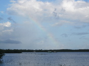 Rainbow on the gulf in the keys