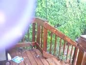 Rain & wind!!!