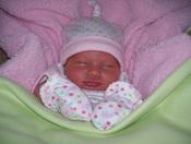 Hali Brooke: The Newest & Cutest !