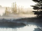 Morning Mist/Wahwashkesh On