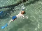 Snorkeling 'The Narrows'