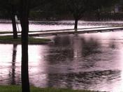 Briar Bay Lake rising and overflowing