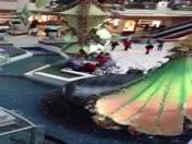 Flash Mob Gardens Mall