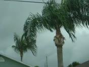 Tropical Storm Bonnie's Winds
