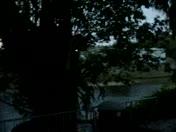 first rain !!!2011 !! 020.mpg