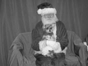 Bear with Santa