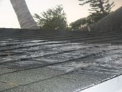 Our roof is Frozen. The result of trying to make Icicles over night :)