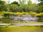 Elkhorn River 2