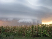 Awesome September Storm