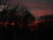 Sarpy Sunset