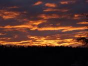Red sky in morning...