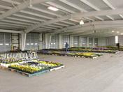 Leola Produce Auction Flowers