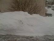 Kyra in snow storm 2-10-10