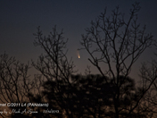 Comet PANstarrs in Twilight