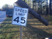 Pine tree fell on sign in Seneca south Carolina on highway 130 beside sailing cl
