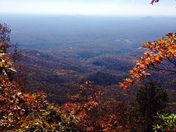 Gorgeous Caesars head yesterday with the family