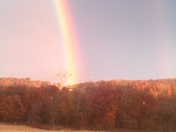 Today's beautiful rainbow