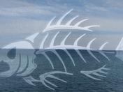 Lake Superior Fish