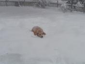 Alexis Having Fun In The Snow