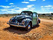 Outback Bug