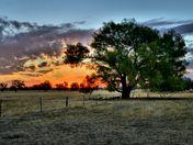 Chiltern Sunset