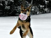 Hexey and snow play