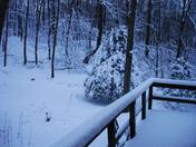 Snow.2.9.13a.jpg