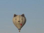 Meow!! New Mexico Balloon Fiesta 2008
