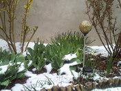 Spring in Santa Fe-1.jpg