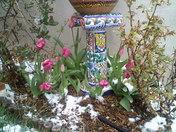 Spring in Santa Fe-3