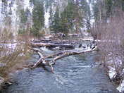 Clear Creek at Cimarron Canyon